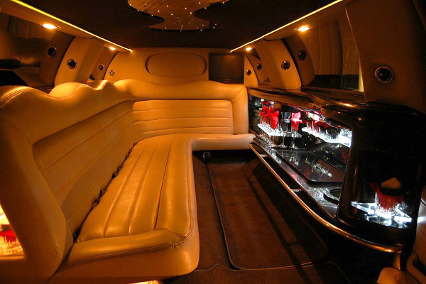 kids parties party bus tulsa